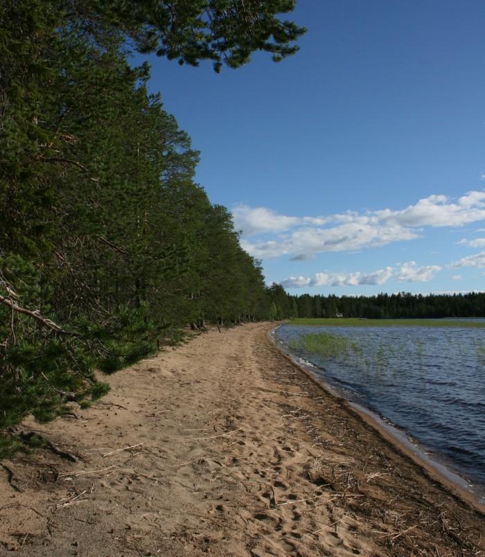 Kallunkijärvi