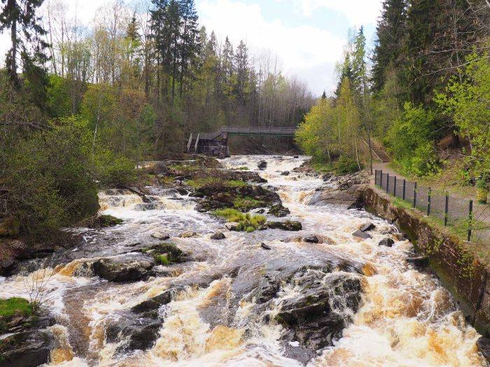 Nurmijärven Myllykosken kevätkuohut